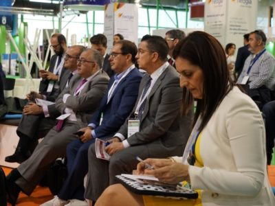 publico asistente greencities